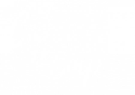 logo-CamilleCMP-Homepage